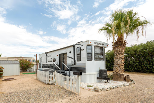 Sleek yet cozy RV with palm tree to the right.