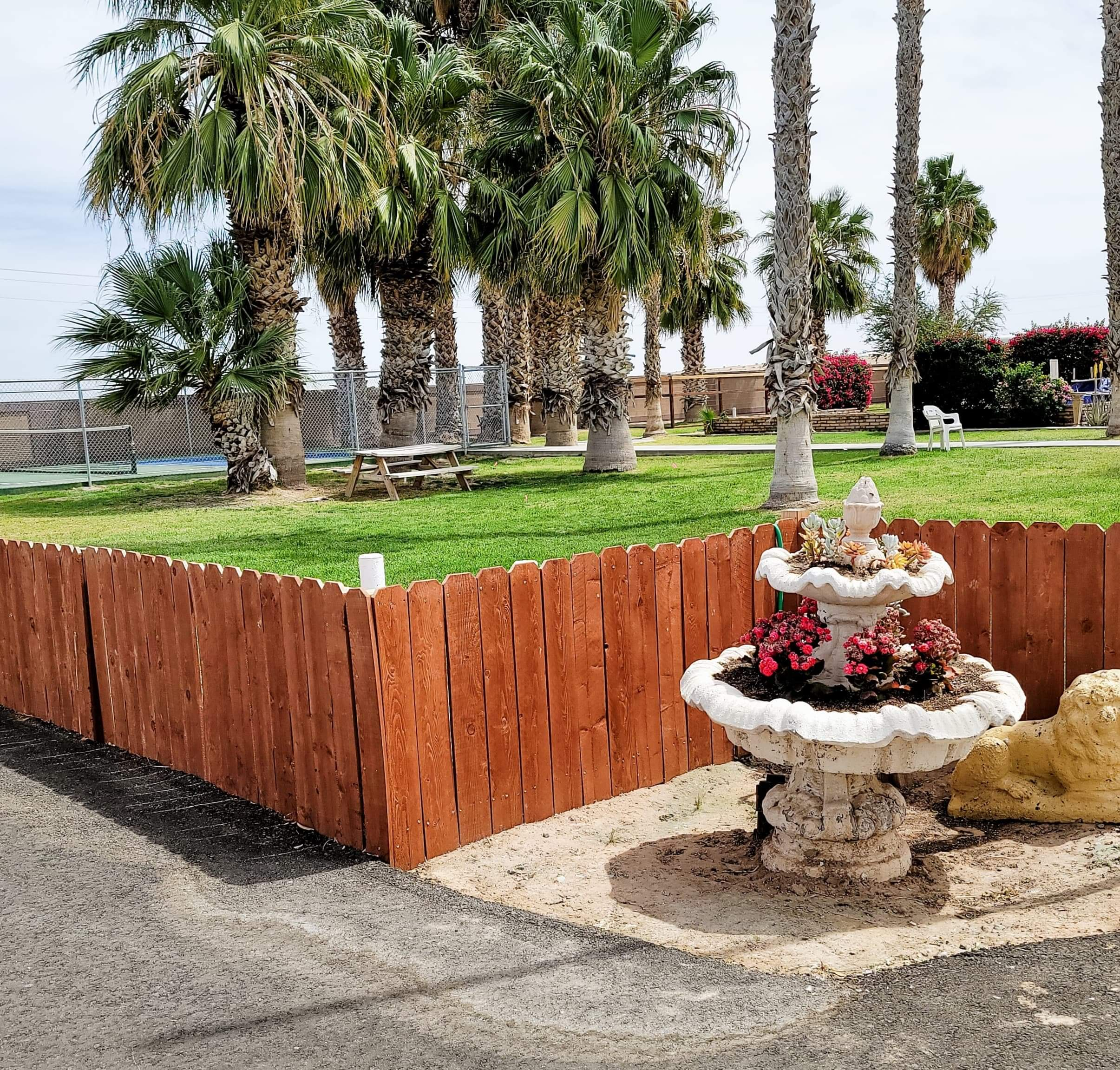 Fountain in front of brown orange fence and greenery behind with a patch of tall palm trees.